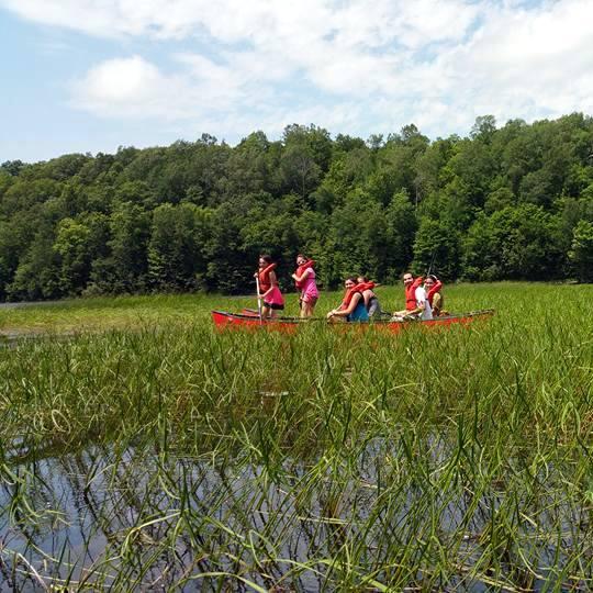 ccc canoe weeds